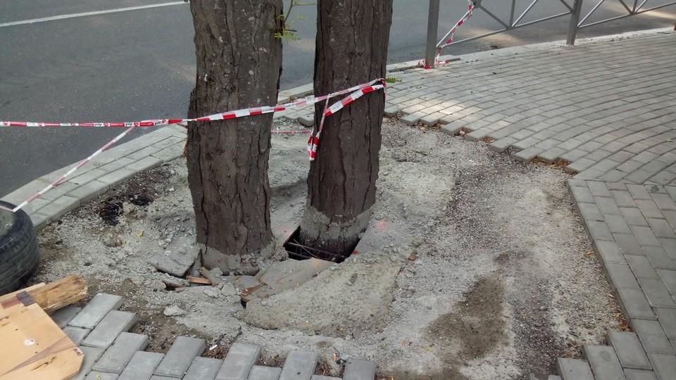 Залить дерево бетоном купить бетон в оренбургской области