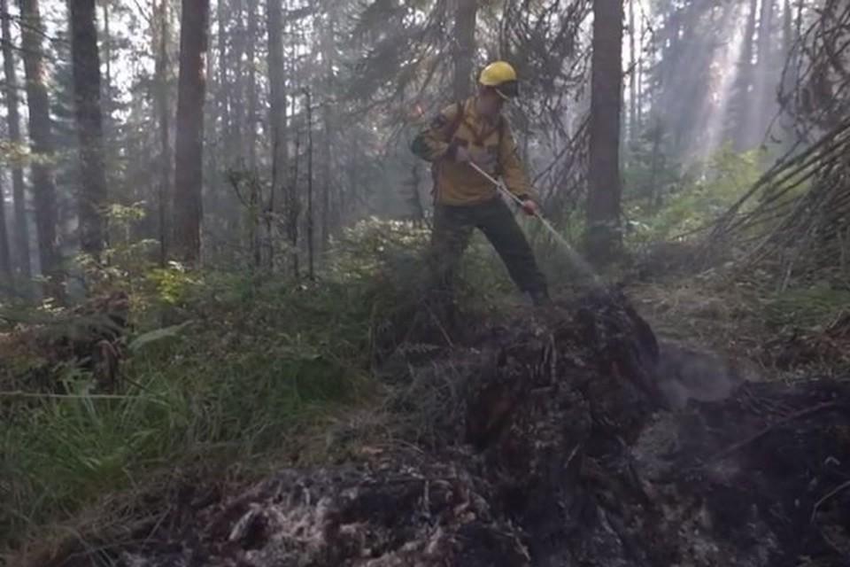 С огнем на земле борются 67 человек. Фото: пресс-служба заповедника «Денежкин Камень»