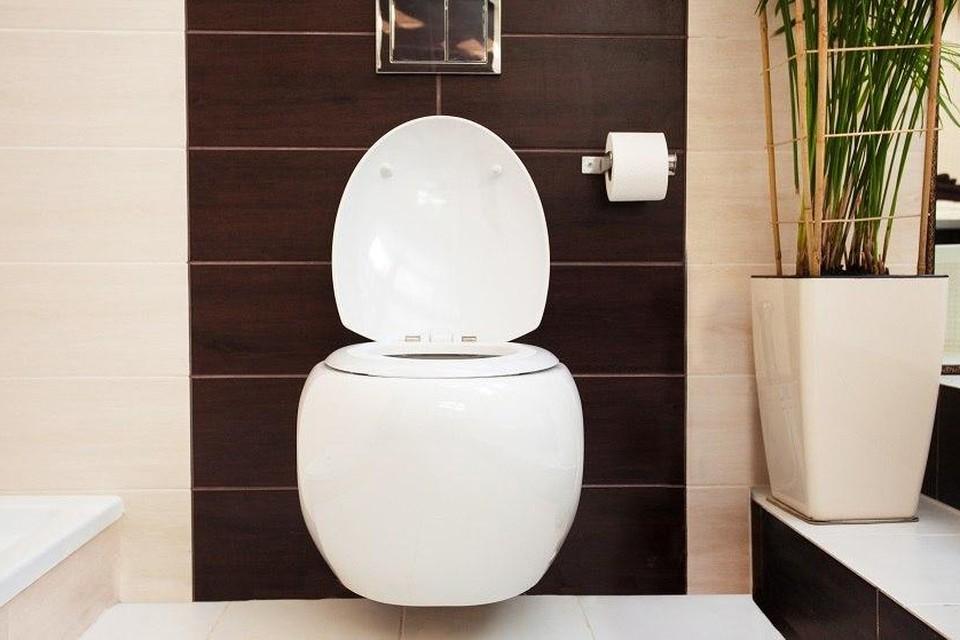Дизайн туалета: 30 лучших фото