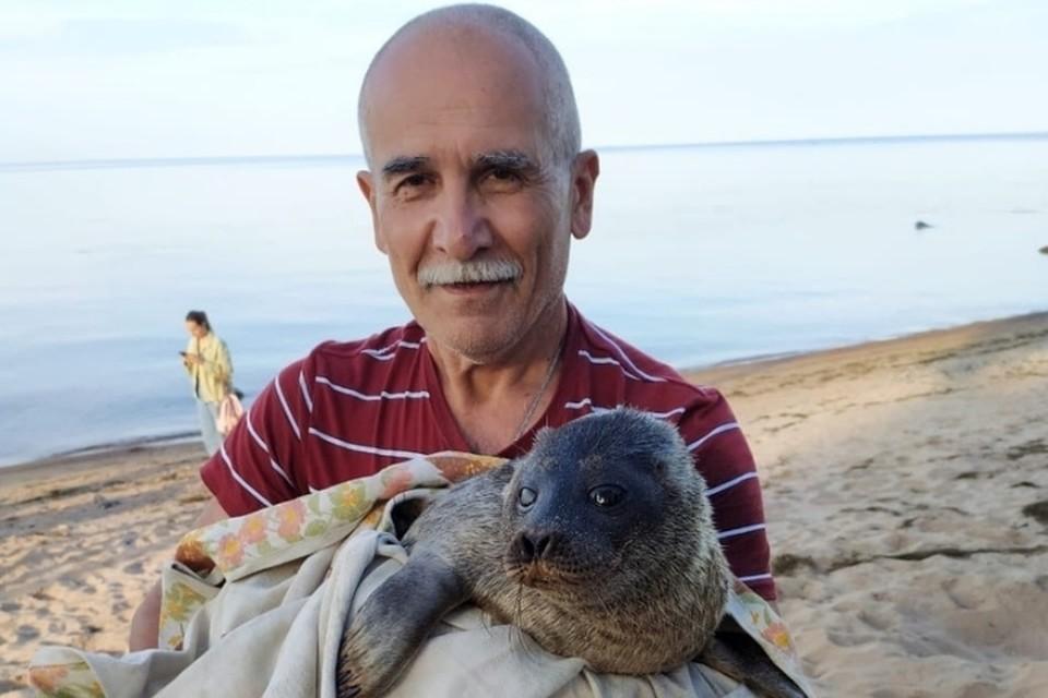 Нерпа Шлиссик, страдающий агорафобией, не смог жить в дикой природе и вернулся к людям. Фото: vk.com/sealrescue