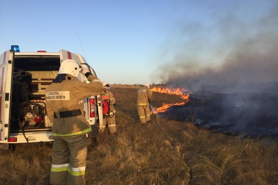 Общая площадь возгорания достигла 700 Га. Фото: правительство Ростовской области.