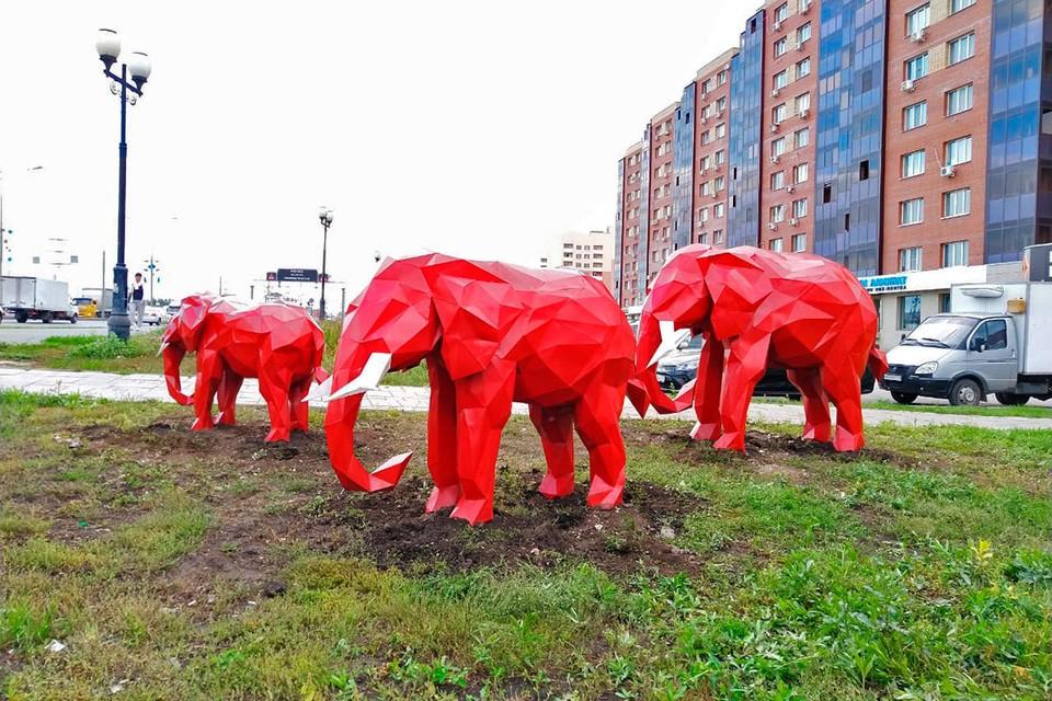 В «Новой Самаре» поселилась целая семья красных слонов.