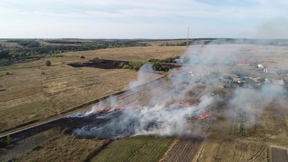 С 14 июля на территории региона введен особый противопожарный режим