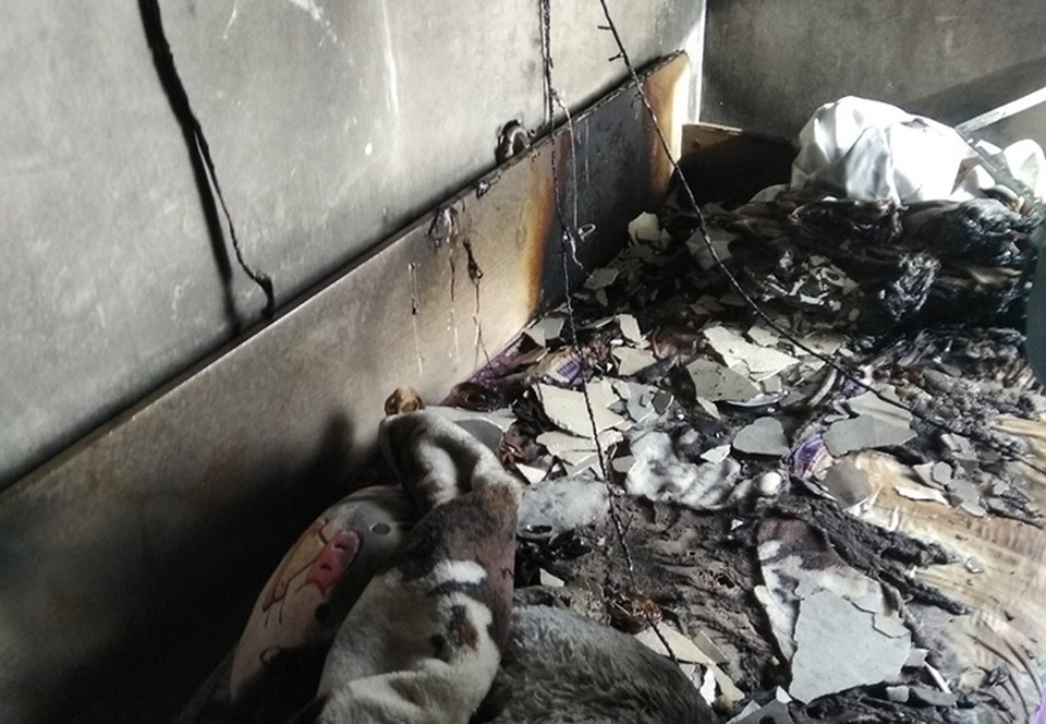 42 человека эвакуировали из загоревшейся многоэтажки в Нижнем Новгороде.