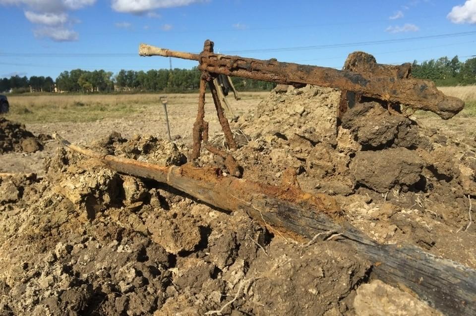 На Пулковских высотах вновь нашли останки бойцов Красной Армии с оружием. Фото: vk.com/club140412014