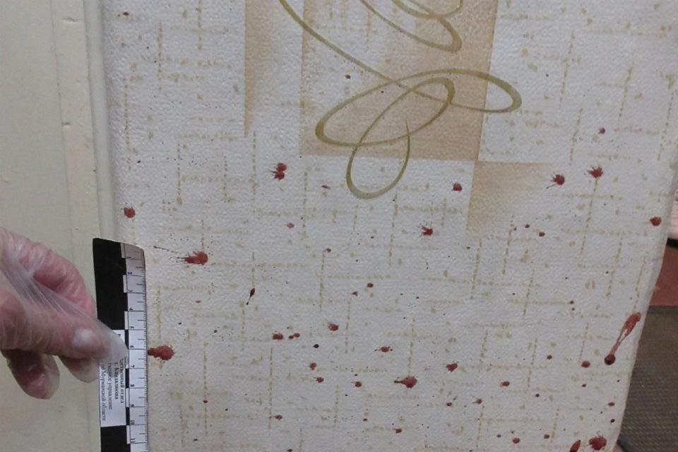 Девушка семь раз ударила прадеда камнем. Фото: СКР по Мурманской области
