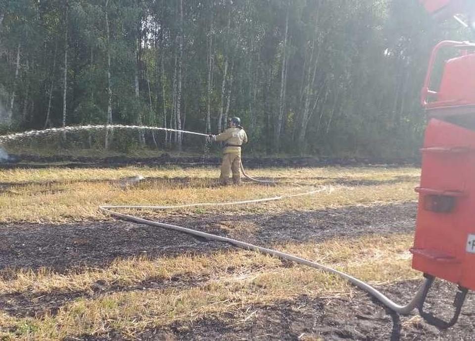 Любителей поджечь стерню и траву регулярно наказывают рублем, однако пожары продолжаются