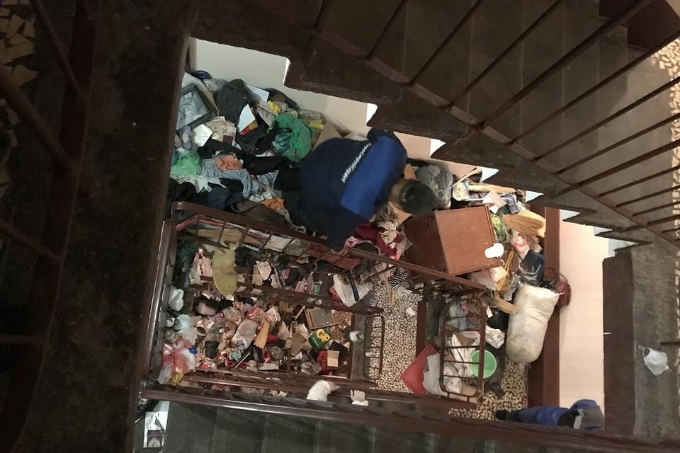 В захламленной квартире в Купчино нашли труп. Фото: vk.com/kupchinonews / Владимир Юдин