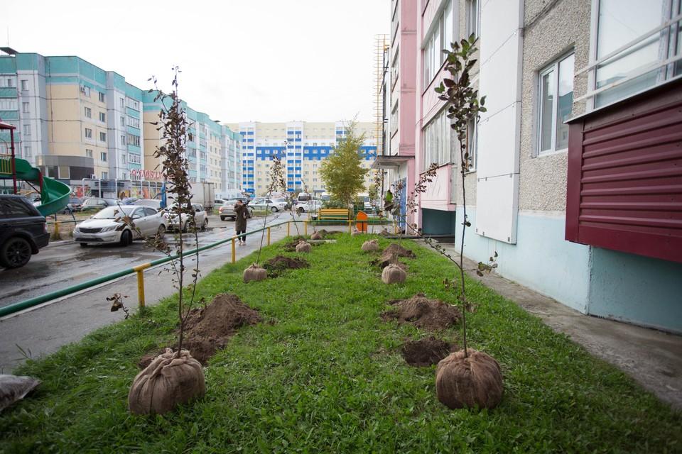 фото: Администрация г. Сургута