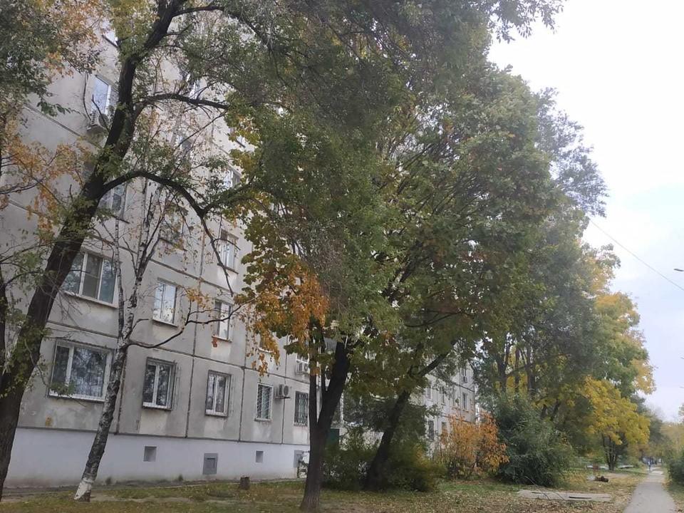 Обстановка в Хабаровске 23 сентября 2020: отключения воды, дорожные работы, заболеваемость