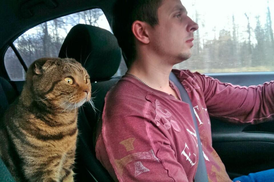 Пристегнутые ремни безопасности - особая культура вождения.
