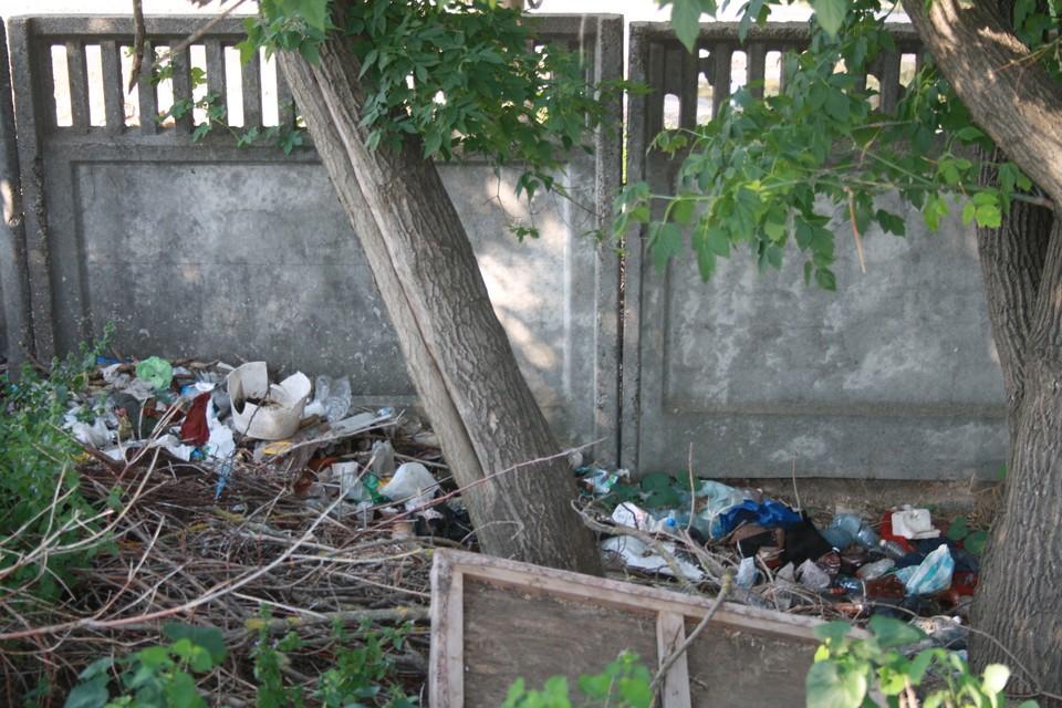 Патруль и штрафы - наказания за мусор в общественных местах. Фото: novostipmr.com