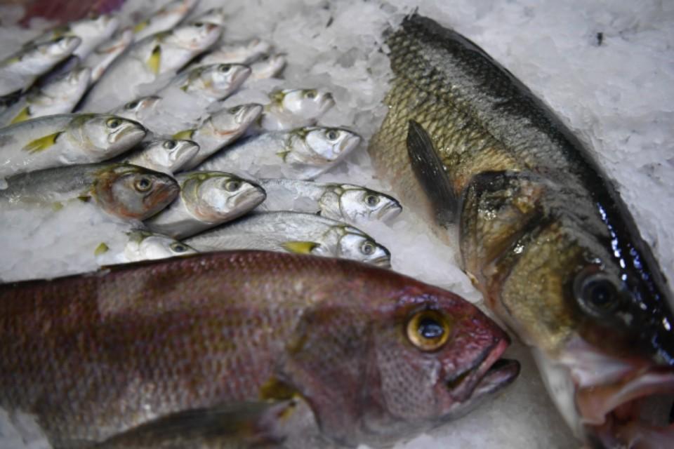 """Многие ушли из """"прибрежки"""" в промышленное рыболовство."""