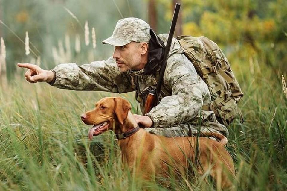 Тюменские охотники автоматически получат уведомление о праве на добычу охотресурсов. Фото - департамент информатизации Тюменской области.