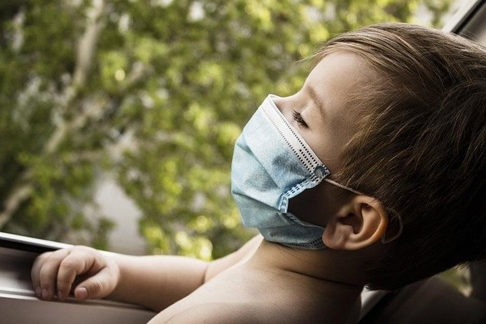 73 новых заболевших коронавирусом выявлено в Смоленской области за последние сутки. Фото: pixabay.com.