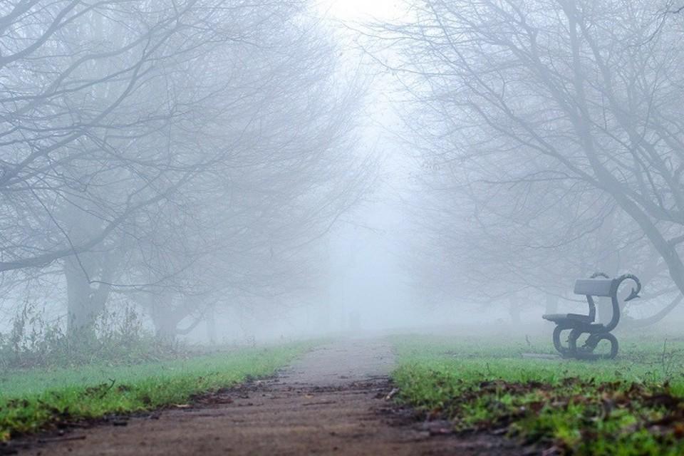 Местами по республике ожидается туман.