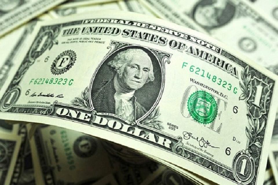 Сообщается, что у женщины было 1500 поддельных долларов. Из них 1000 она отдала своим знакомым — вернула долг.