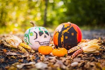 Слушаем Бродcкого и Окуджаву, готовимся к Хеллоуину: что делать на неделе c 24 октября