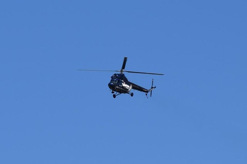Под Смоленском вертолеты нанесли удар по целям «противника». Фото: pixabay.com.