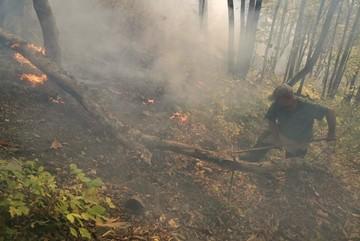 Лесной пожар в Туапсинском районе: огонь вплотную приблизился к поселку