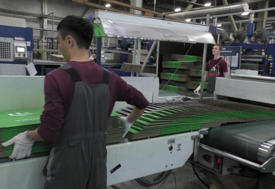 Шустрые парни забирают с конвейера зеленые плоские коробки и складывают их большими стопками