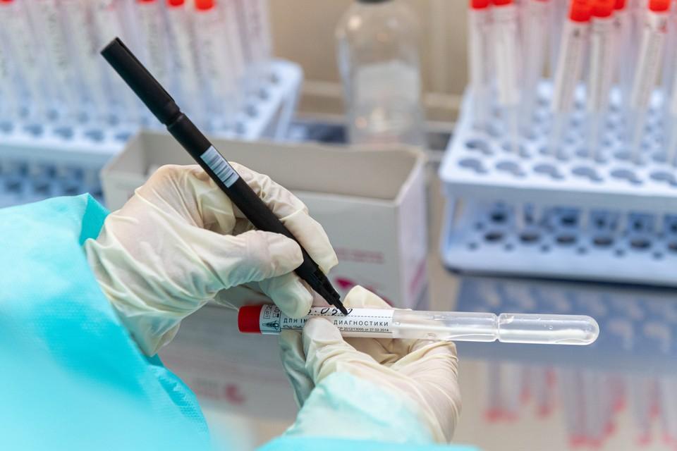Роспотребнадзор ввел норму тестирований на коронавирус