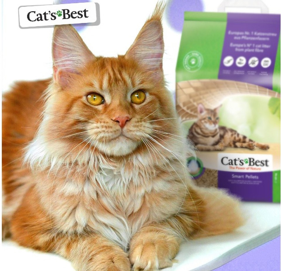 Cat's Best – древесный комкующийся наполнитель №1 в Европе