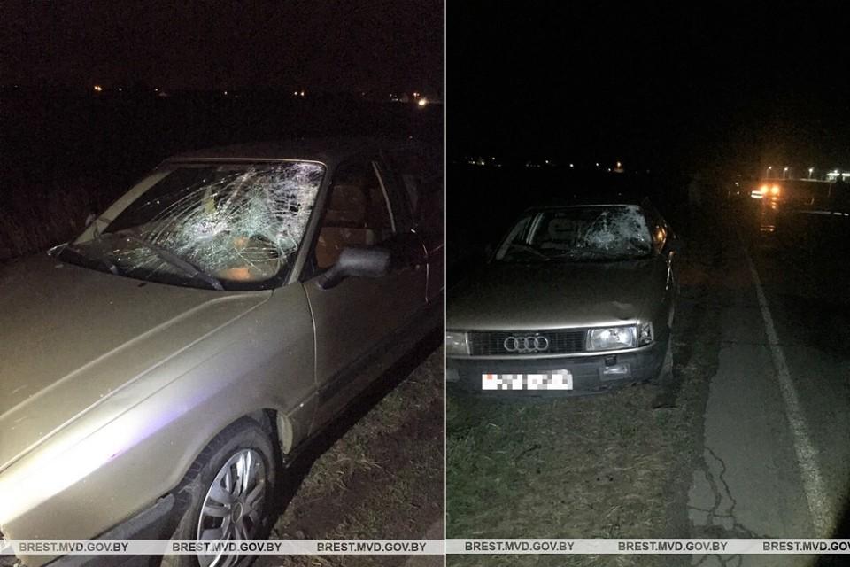 Водитель сбил насмерть пешехода, который шел почти по центру дороги. Фото: УВД Брестского облисполкома.