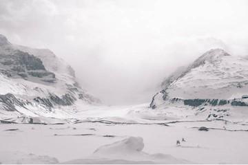 Организован комитет по подготовке председательства России в Арктическом совете