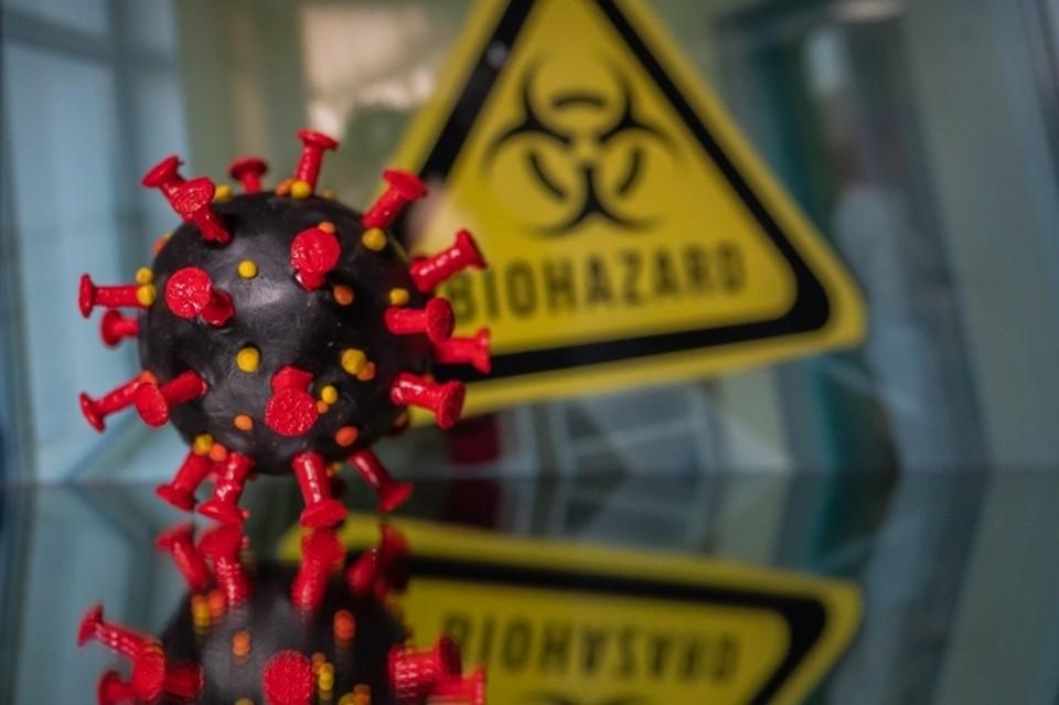 В Белгородской области за два дня скончались еще 5 пациентов, зараженные коронавирусной инфекцией