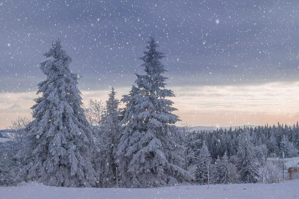 Погода на Ямале на 9 декабря