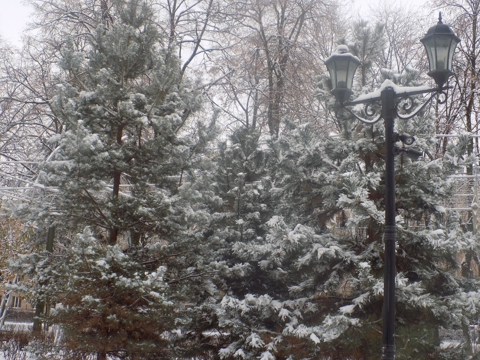 В Белгороде в новогоднюю ночь погодных сюрпризов не ожидается.