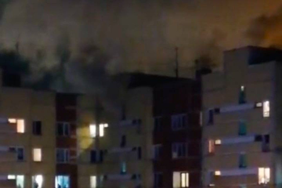 В Сестрорецке в пожаре погибли 26 собак