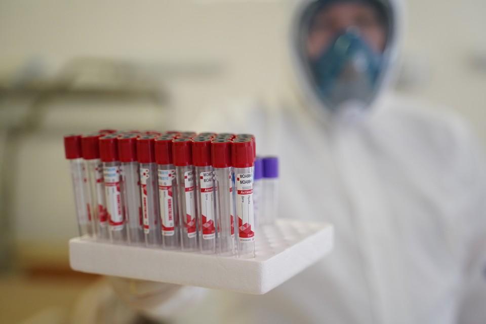 Коронавирус в Калининграде, последние новости на 1 февраля 2021 года: пандемия наконец-то притормозила