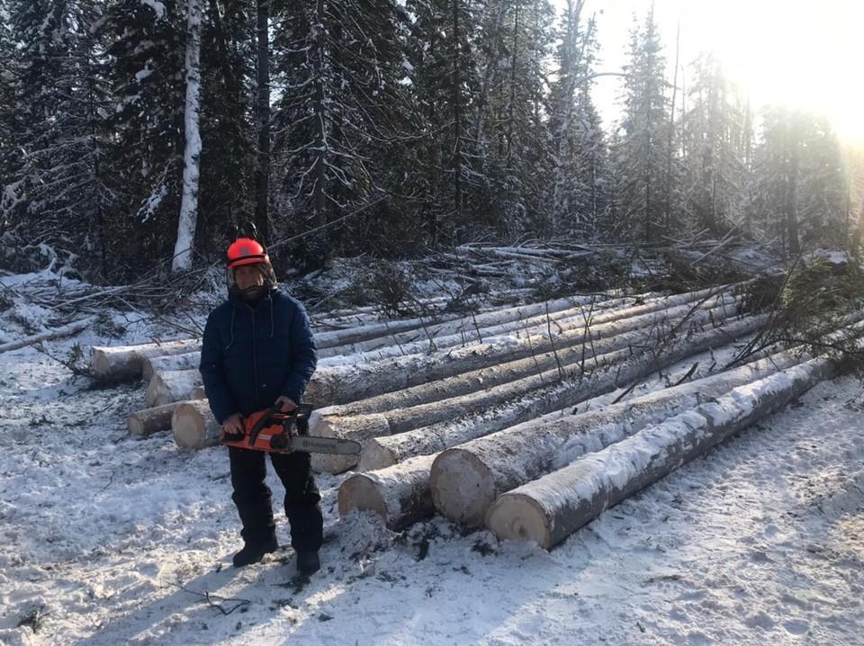 После изучения теории и практических занятий ученики показывают свое мастерство на лесосеке Фото: краевой Лесопожарный центр