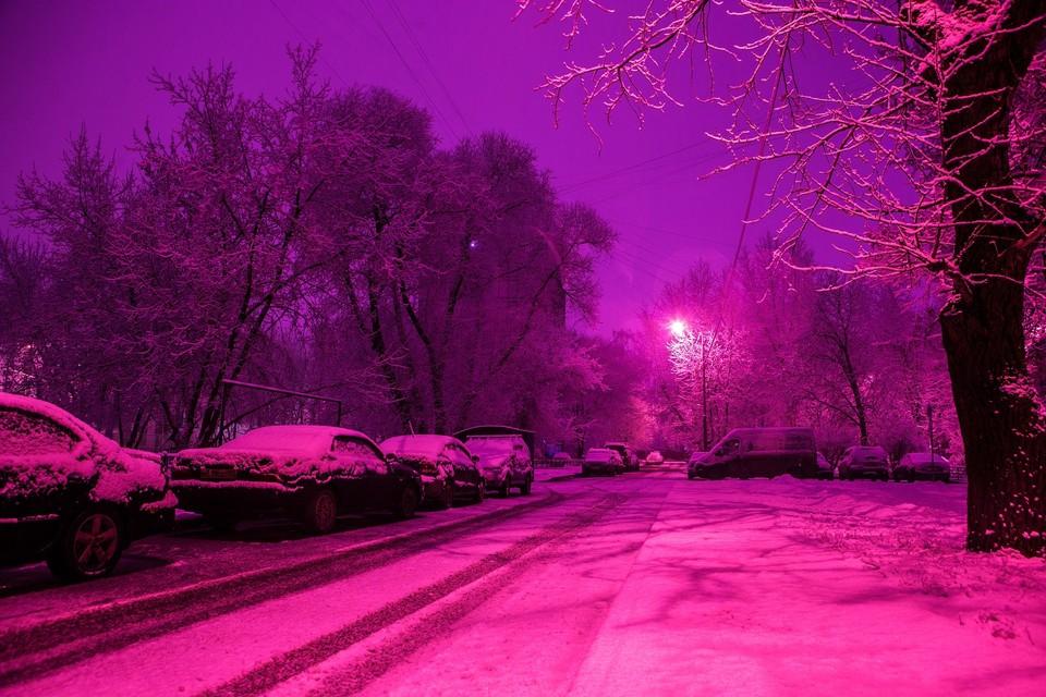 Ночью в Алматы выпал снег, синоптики обещают потепление через несколько дней