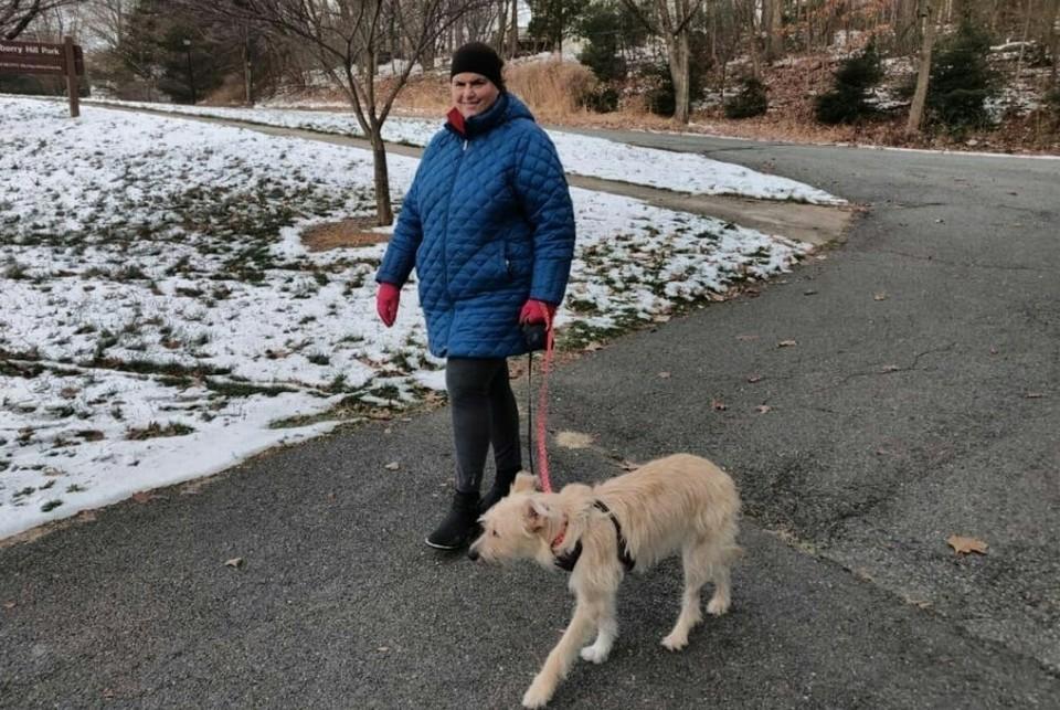 Теперь бывшая омичка Тесс гуляет с хозяйкой в нью-йоркских парках. Фото: приют «Теремок»