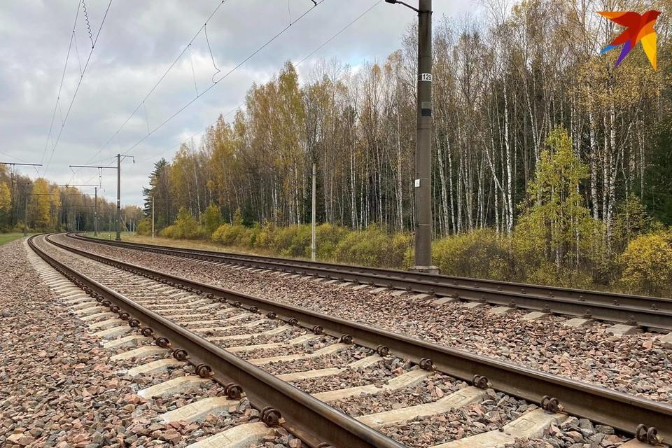 В Орше поезд насмерть сбил одного из рабочих, которые чистили снег с железнодорожного полотна
