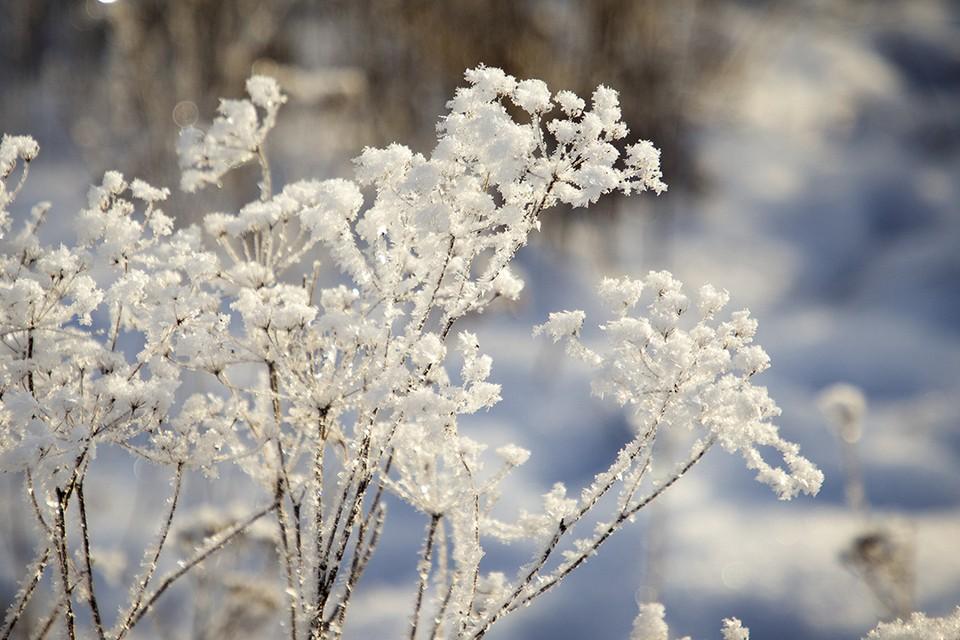 Погода в Иркутске: 16 февраля синоптики обещают снег