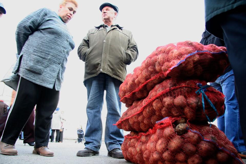 Соседняя Новосибирская область заняла в рейтинге 22 место