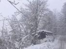 Видео снегопада в Сочи 18 февраля 2021: сугробы на пальмах и буксующие машины