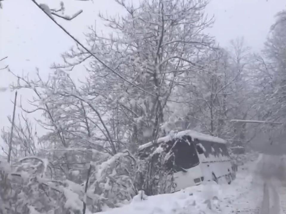 Скрин видео: t.me/gorodsochi