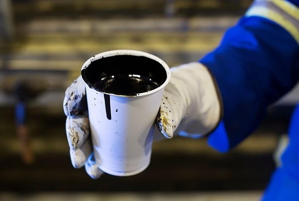 РФ и Белоруссия подписали соглашение о перевалке нефтепродуктов в российских портах