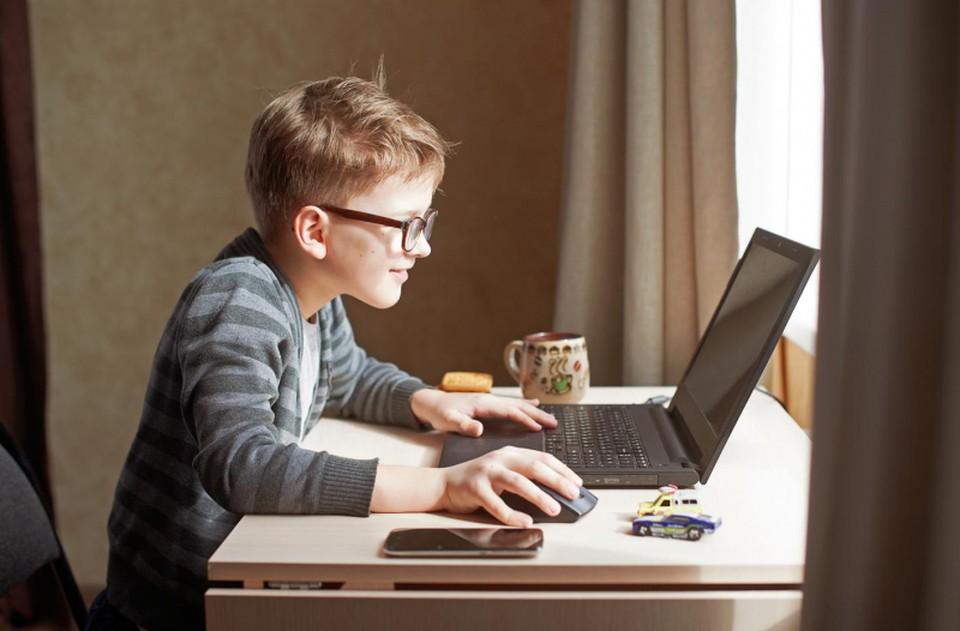 В Молдову возвращается онлайн-обучение (Фото: /borvedomosti.ru).
