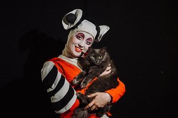 Фотопроект «Комсомолки»: артисты всемирно известного уличного театра помогают брошенным котикам найти хозяев
