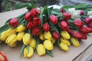 НЛМК поздравил работниц предприятия с 8 Марта