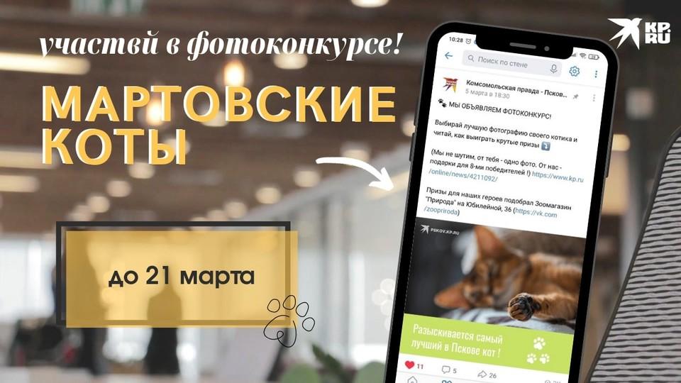 Участвуй в фотоконкурсе «Мартовские коты» и выигрывайте призы
