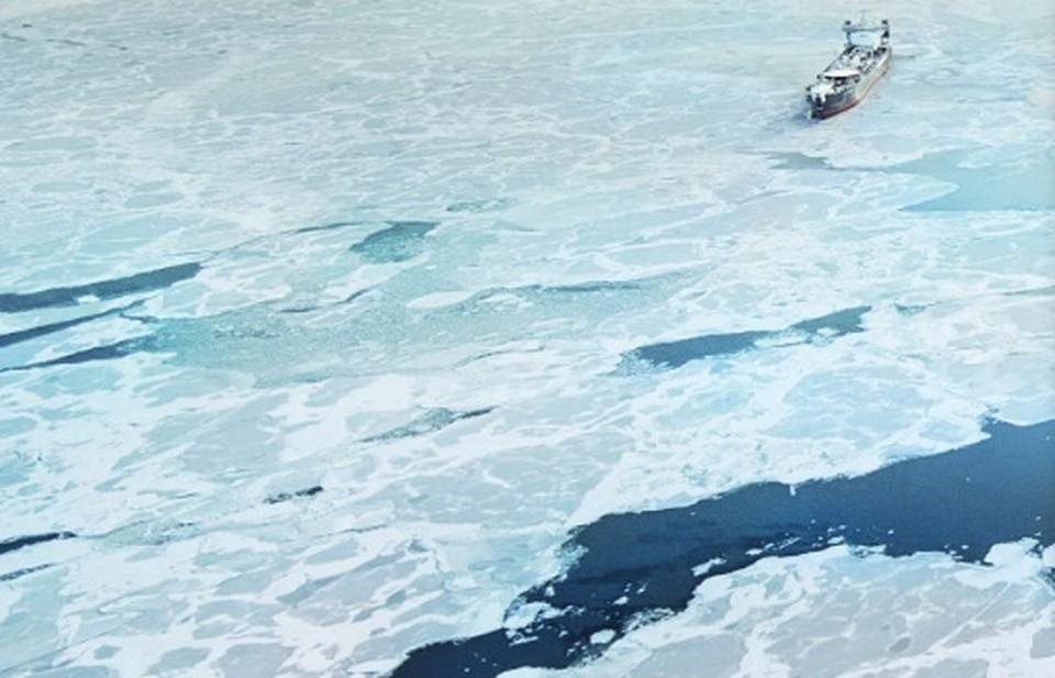 «Открытие» стал одним из 6 банков, уполномоченных кредитовать резидентов Арктической зоны (АЗРФ) по сниженной ставке.