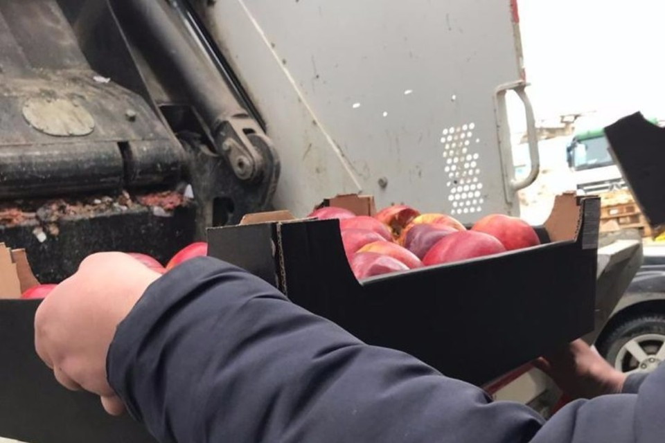 В результате сотрудники изъяли 1,28 тонны яблок, которые впоследствии были уничтожены. Фото: rshn43.ru
