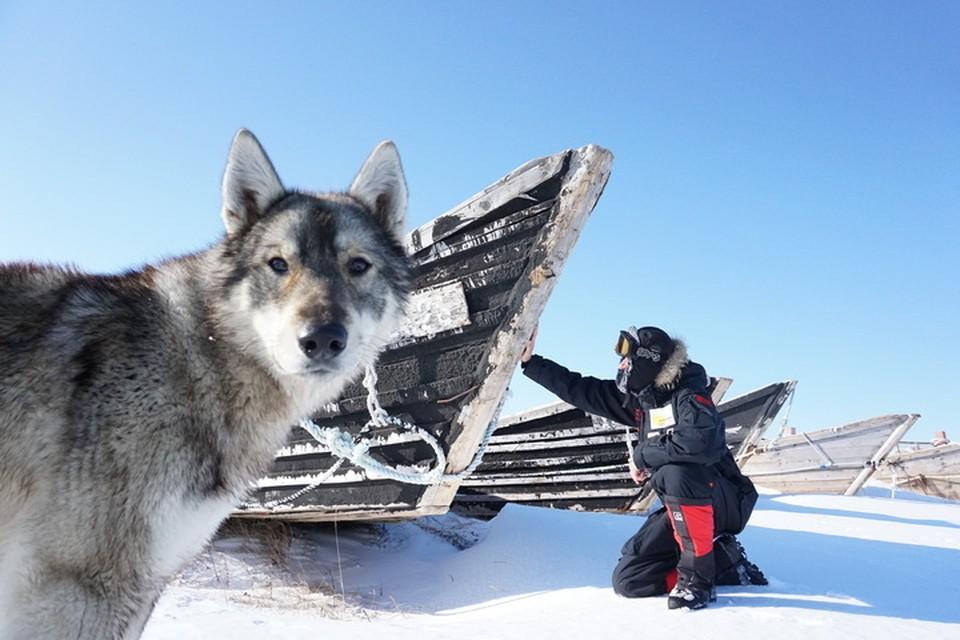Сквозь ураган и торосы: Максим Харченко завершил экспедицию к Заливу Счастья